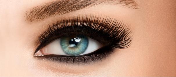 Ojos y Cejas